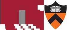 Team MIT-Princeton logo